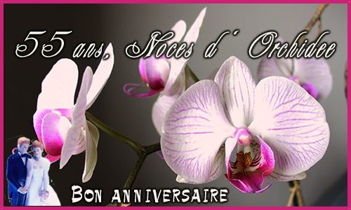 Carte 55 Ans Orchidee Cybercartes Com