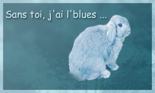 J'ai le blues de toi