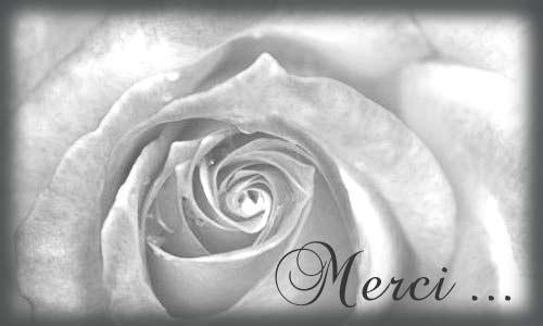 Extrêmement Cartes Remerciements Condoléances - Cybercartes.com FM05