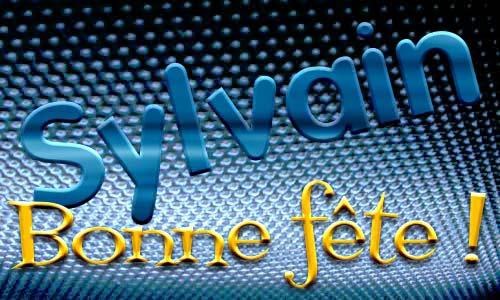 Carte Virtuelle Bonne Fete Sylvain.Carte Sylvain 04 Mai Cybercartes Com