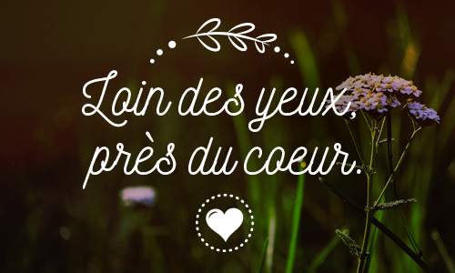 Cybercartes cartes de voeux cartes virtuelles gratuites - Image d amour gratuite ...