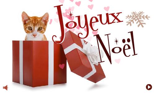 Carte joyeux no l chat - Image de chat de noel ...