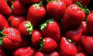 J'ai envie de fraises !