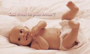 Qui c'est le plus beau ?