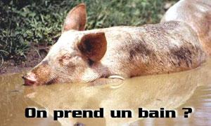 On prend un bain ?