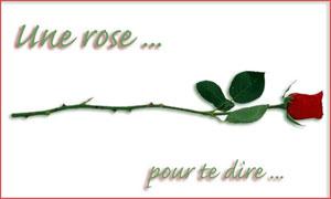 Une rose pour te dire ...