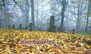 Mémorial dans la forêt
