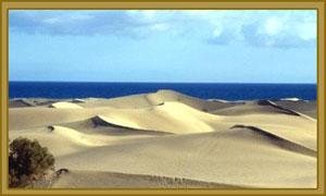 Dunes..