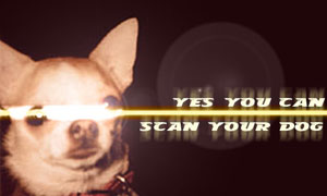 Scan your dog