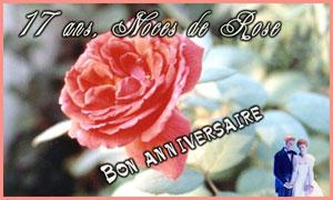 17 ans - Rose