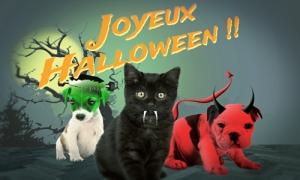 Les mini monstres de Halloween