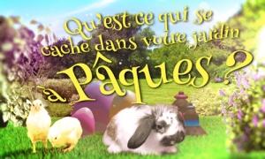 Qu'est-ce qu'il se passe dans votre jardin à Pâques ?
