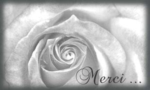 Cartes Remerciements Condoleances Cybercartes Com