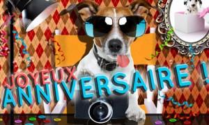 carte anniversaire chien animée