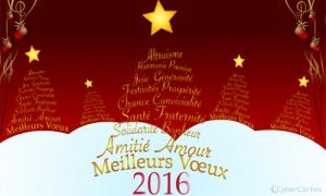 2016 - Meilleurs voeux