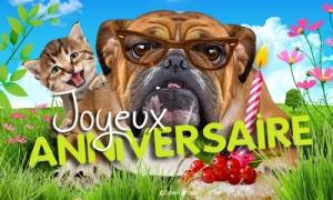 DE FROMENT Terrier Carte d/'anniversaire du chien Dog Maman Papa Frère Soeur