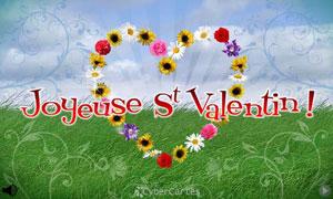 Des fleurs pour la Saint Valentin
