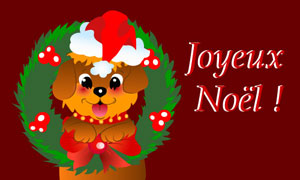 Joyeux Noël - chien