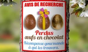 A la recherche des oeufs de Pâques
