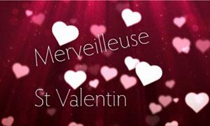 Merveilleuse Saint Valentin !