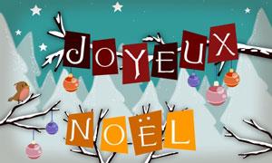 Joyeux Noël - oiseaux