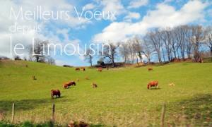 Voeux du Limousin
