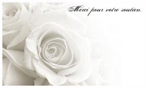 Cartes Condoléances Virtuelles Gratuites Cybercartes Com