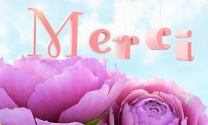 Des fleurs et un Merci...