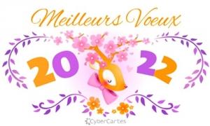 Bonne année petit cerf