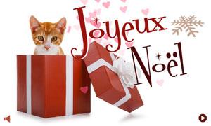 Joyeux Noël - Chat