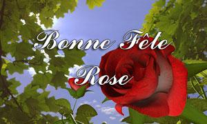 Bonne fête Rose