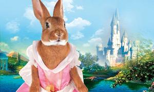 Un lapin, une princesse